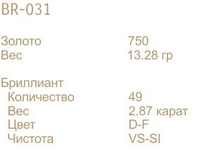 BR-031-DATA-RU