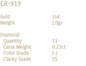 CR-919-DATA-EN